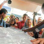 Wapres JK Minta Malaysia Hukum Tegas Penganiaya Adelina